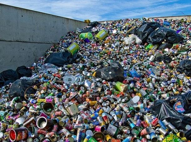 Рециклирали сме 184 000 тона отпадъци за година. Снимка: Всеки ден