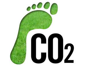 10 лесни идеи как да намалим въглеродния си отпечатък